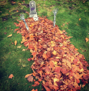 halloween landscaping ideas coquitlam