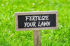 fertilizing your lawn